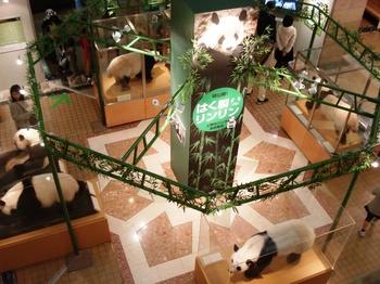 20090222 科博パンダ展4.JPG