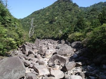 20090517 5-8愛子沢.JPG