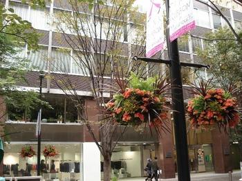 20091025 丸の内仲通り13-1.JPG