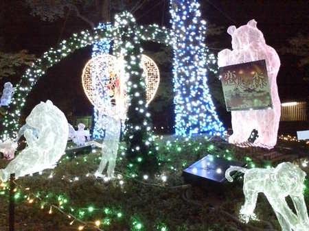 20091123 上野恩賜公園イルミネーション.JPG