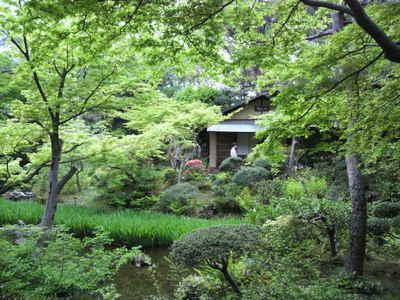 20100424 根津美 庭園2.jpg