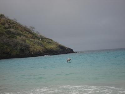 20100504 4フロリアーナ島11.JPG