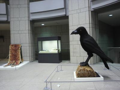 20100723 横浜美術館.jpg