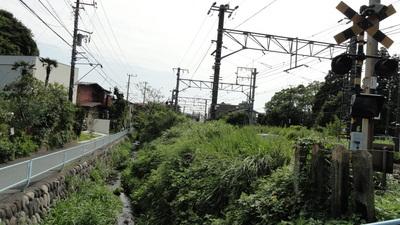 20100919 鎌倉3JR横須賀線踏切.JPG
