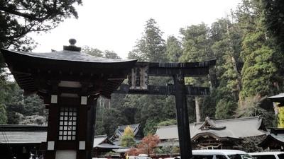 20101114 10二荒山神社1.JPG