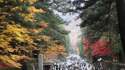 20101114 9東照宮2.JPG