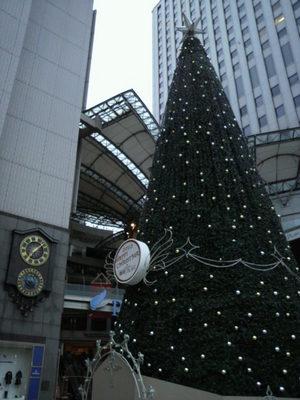 20101217 パセーラXマスツリー.JPG