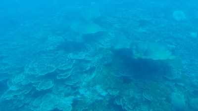20110219 Submarine Atlantis7.JPG