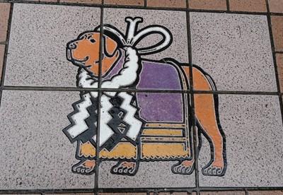 20110718 7土佐闘犬.JPG