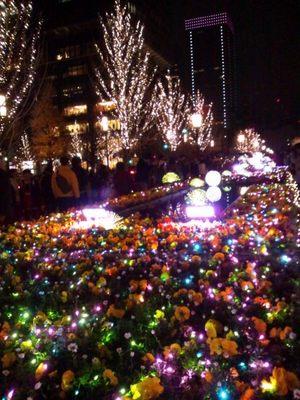 20111225 Lightopia1.JPG