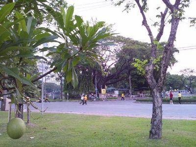 20120220 3ルンピニー公園1.JPG