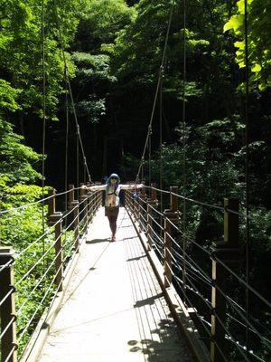 20120819 高尾山12吊り橋(みやま橋)3.JPG