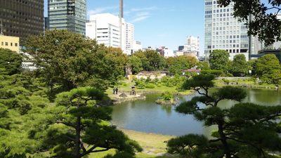 20121013 旧芝離宮庭園3.JPG