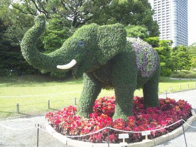20121013 浜離宮庭園1.JPG