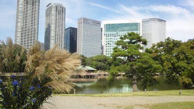 20121013 浜離宮庭園4.JPG