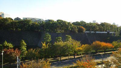20121110 皇居.JPG