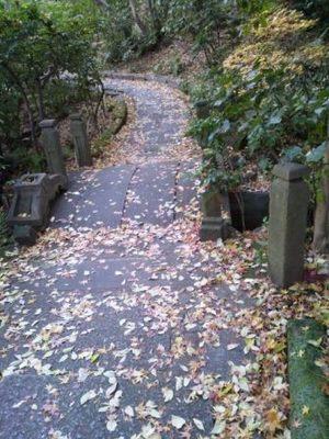 20121209 根津美術館庭園3.JPG