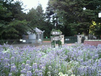 20100916 3北大付属植物園3.JPG