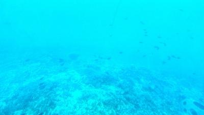20110219 Submarine Atlantis14.JPG