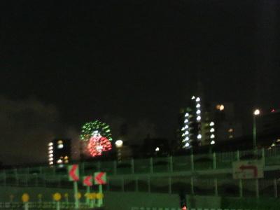 20110827 隅田川花火大会1.jpg